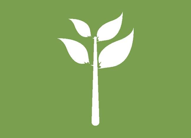 Patología Forestal