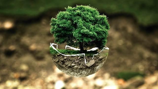 ¿Qué es la Biotecnología Ambiental?